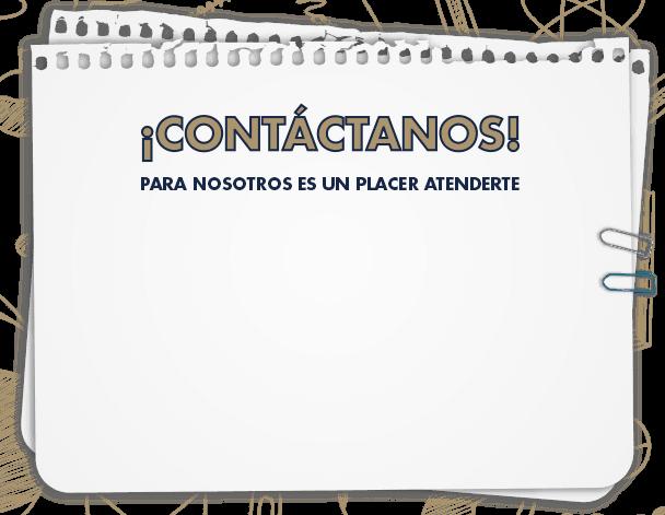 Contacto Colegio Simón Bolivar